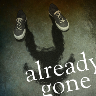 Already Gone - True Crime Podcast