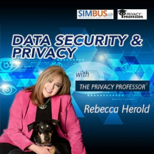 Data Security and Privacy with the Privacy