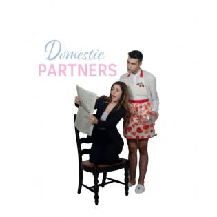 Domestic Partners