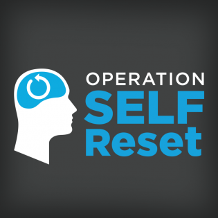 Operation Self Reset